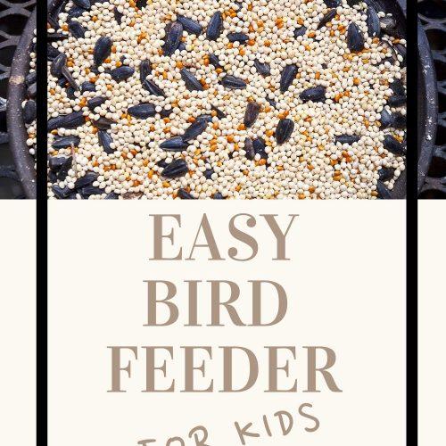 A Pinterest Pin For A Bird Feeder